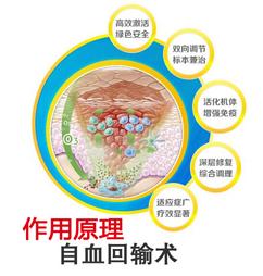 自血回输术作用原理.jpg
